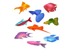 Aquarium fish vector illustration icons set isolated on white background.