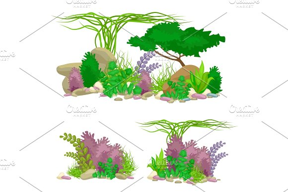 Set Isolated Colorful Corals And Algae Vector Underwater Flora Fauna