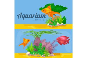 Aquarium fish, seaweed underwater, banner template layout with marine animal