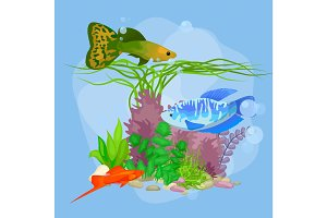 cartoon tropical fish swimming in nature undersea diving, home aquarium colorful decoration underwater element reef and coral vector illustration.Sea and blue ocean tropical fish background
