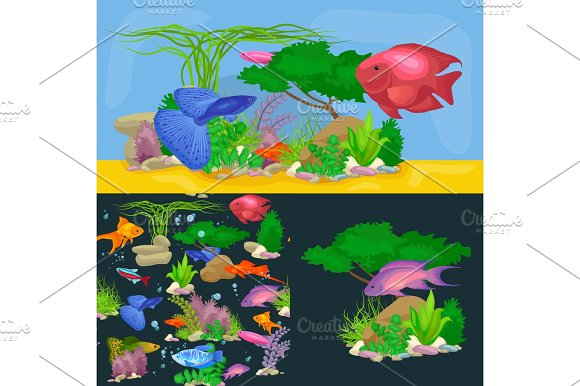 Underwater Vector World Background With Fish Seaweed And Bubbles