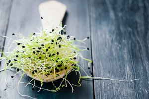 Microgreens in spoon
