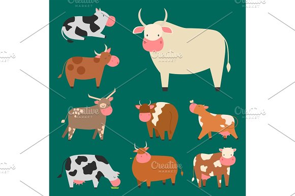 Bulls Cows Farm Animal Character Vector Illustration Cattle Mammal Nature Wild Beef Agriculture