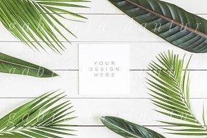 Tropical Foliage Square Card Mockup
