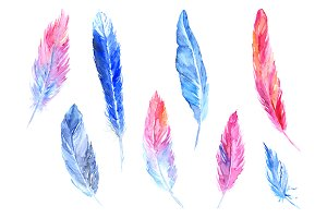 Colorful feather isolated set