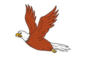 Angry Eagle Flying Cartoon