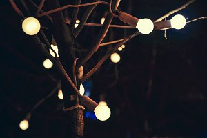 Glowing light bulbs on tree