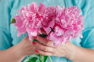 Woman holding beautiful pink peonies