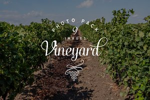 Vineyard photo pack