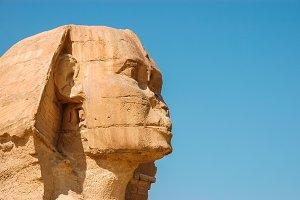 Profile Sphinx