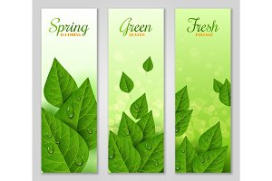 Vertical banners with green leaves