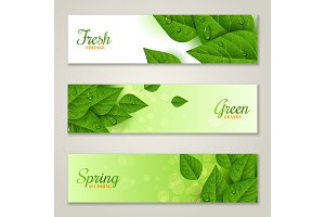 Horizontal banners with green leaves