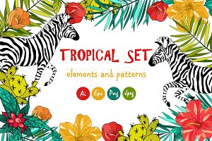Tropical set. Flowers and zebra