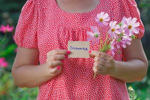 woman hand holding pink flowers