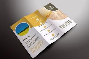 Agriculture Tri-fold Brochures