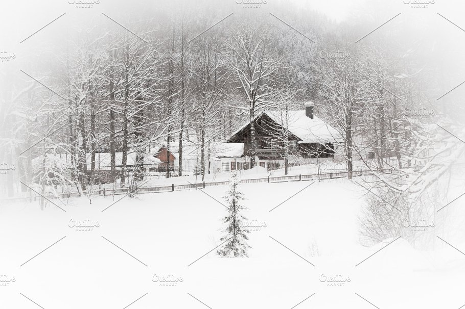 Snowy Alpine house in the woods ~ Nature Photos ~ Creative Market