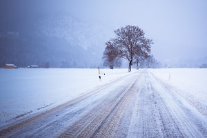 Road and Lonely Tree in Snow