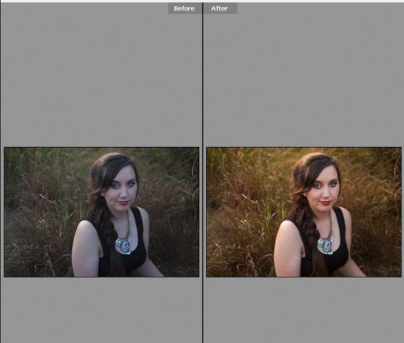 Backlit Beauty-Camera Raw Preset
