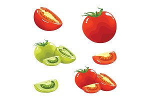 Tomato Red Green Realistic Vector