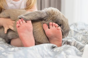 Baby feet and rabbit