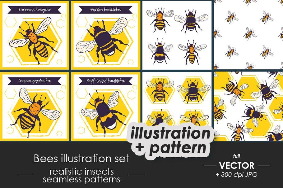 48cdfa8b05b6f Bumble Bee Mandala ~ Illustrations ~ Creative Market