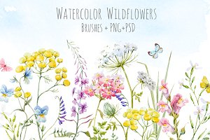 Watercolor wildflowers set