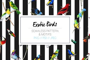 Exotic Birds - Seamless Pattern