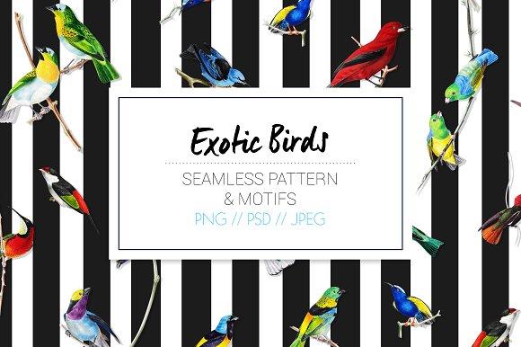 Exotic Birds - Seamless Pattern - Patterns