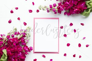 A6 card mockup, deep pink stock