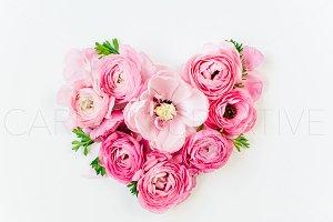 Ranunculus Heart Stock Photography