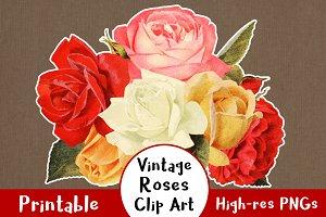 38 Vintage Rose Clip Art Graphics
