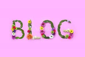 Blog - Social media concept.