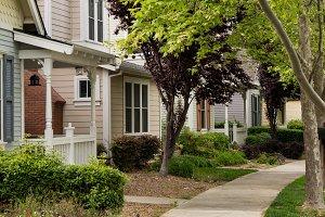 Tree lined street in California residential neighborhood