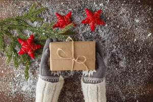 Female hands in winter gloves