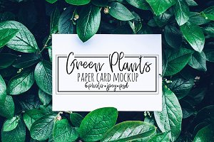 Green Plants and Paper Card Mockup