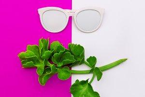 Stylish accessory sunglasses.
