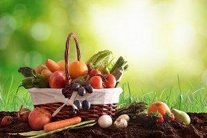 Fruits & vegetables on soil green