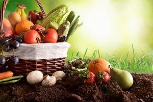 Fruits & vegetables on soil concept