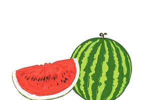 watermelon, sketch style, vector
