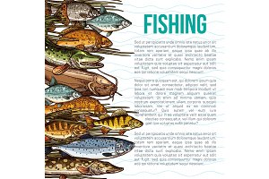 Vector poster for fishing or sea fish product
