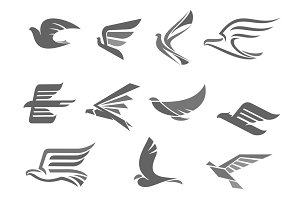 Vector icons of flying birds and wings