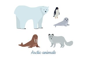 Set of Arctic Animals Illustrations in Flat Design