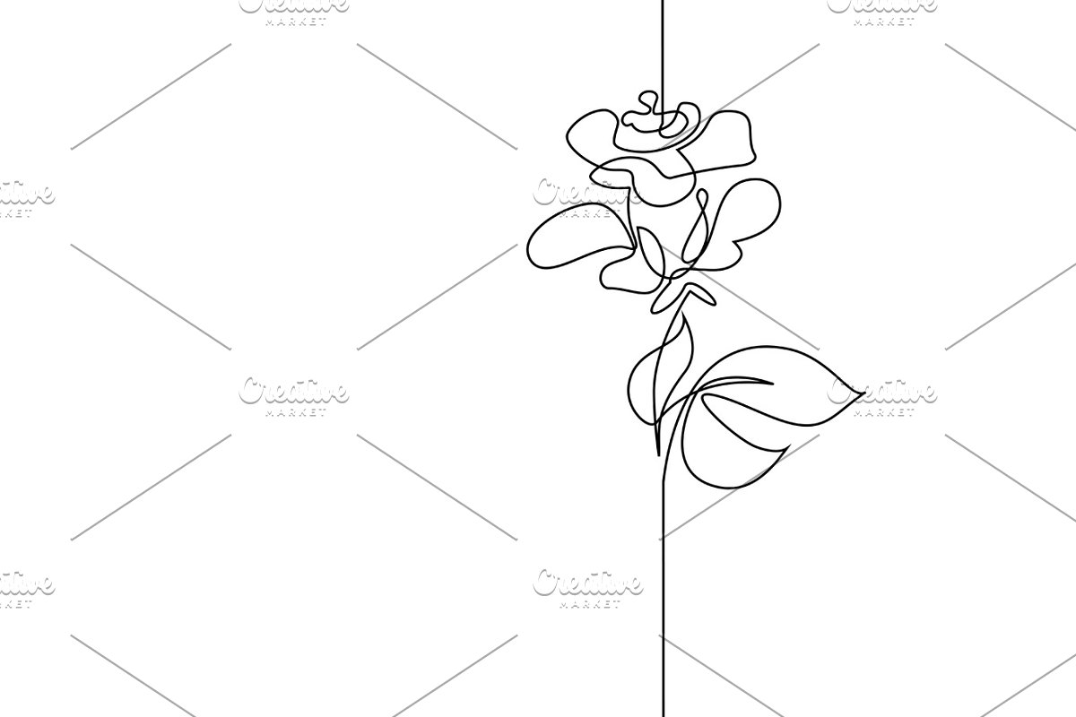 Continuous line drawing flower rose