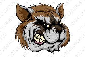 Raccoon mascot character