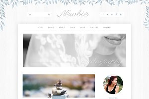 Newbie Website Template PSD