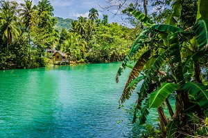 Jungle green river Loboc at Bohol island of Philippines. Bamboo hut under palm trees, Bohol, Philippines
