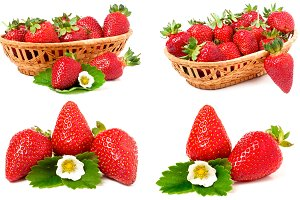 Strawberry with leaves and flowers isolated on white background. Collection or set