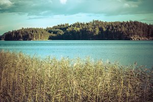 Vintage toned image of lake and forest in Finland