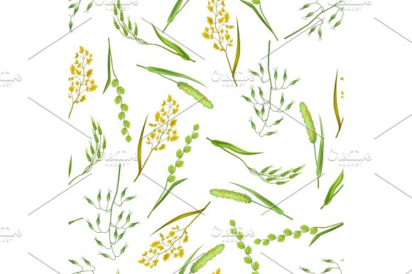 Seamless Pattern With Herbs And Cereal Grass Floral Ornament Of Meadow Plants