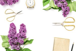 Floral flat lay. Lilac flowers